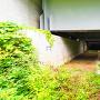 ルート1(東海環状道を潜る)