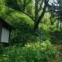 芦田城の駐車場と登城口
