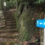 車道からの登り口