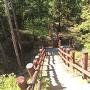 北側堀切から二の丸に登る木製階段を上から見る