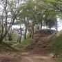 南帯曲輪から見た本丸搦手口の土塁と石垣