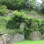 石垣(綿蔵門から)
