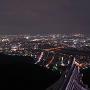岐阜城パノラマ夜景(7月)