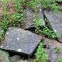 埋門跡石垣付近の刻印