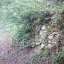 水手門跡脇の本丸石垣