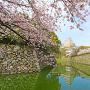 姫路城[提供:FIND/47]