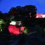 玉泉院丸庭園ライトアップ