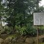 足利家の墓所
