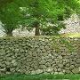 東面の粗積み石垣