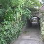 赤煉瓦トンネル