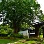 山崎藩陣屋門(紙屋門)と左右の土塀