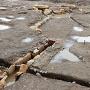 池状遺構と排水溝