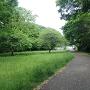 太尾見晴らしの丘公園