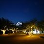 松山城 本丸のライトアップ