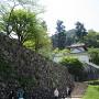 出石城と石垣