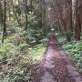 藩庁跡西側の道