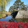 多様な色彩を兼ねる松代城