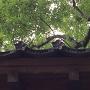 移築 太鼓門(寿栄神社神門)の瓦