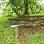 本丸跡の雁木