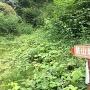 夏の登城口(葛山神社近くの駐車場から)