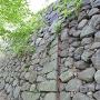 高虎拡張の石垣