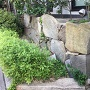 移設 三の丸石垣