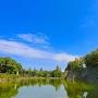 小天守、大天守の石垣から松井神社方面の景色