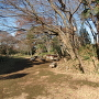 神庭緑地(郭跡と土塁)