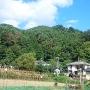 原畑城から見上げる笹洞城