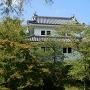 木々に覆われた東櫓