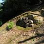 東郭の石積