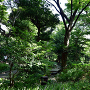 御殿山庭園