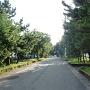 城址入口付近の旧東海道