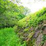本丸石垣(初夏)
