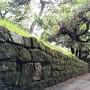道沿いに残る石垣