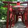 烏森稲荷神社の鳥居