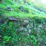 登城路石垣