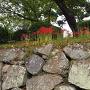 石垣と彼岸花