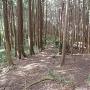 永井氏城へ続く尾根