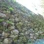 本丸付近の石垣