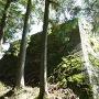 本丸埋門付近の石垣