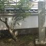 石碑(諏訪郭)