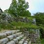 石垣群と石段