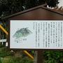 城山団地側の案内看板