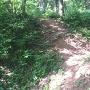 途中から竪堀になっている空堀(堀3)