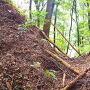 長大な竪堀