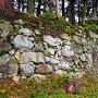 出丸の石垣(秋)