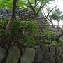 石垣(天守裏側)