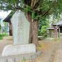 東明寺(河越夜戦跡地)