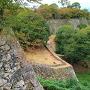 連なる石垣と、秋の樹々